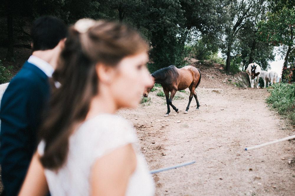 Nuria&Gerard-65.jpg