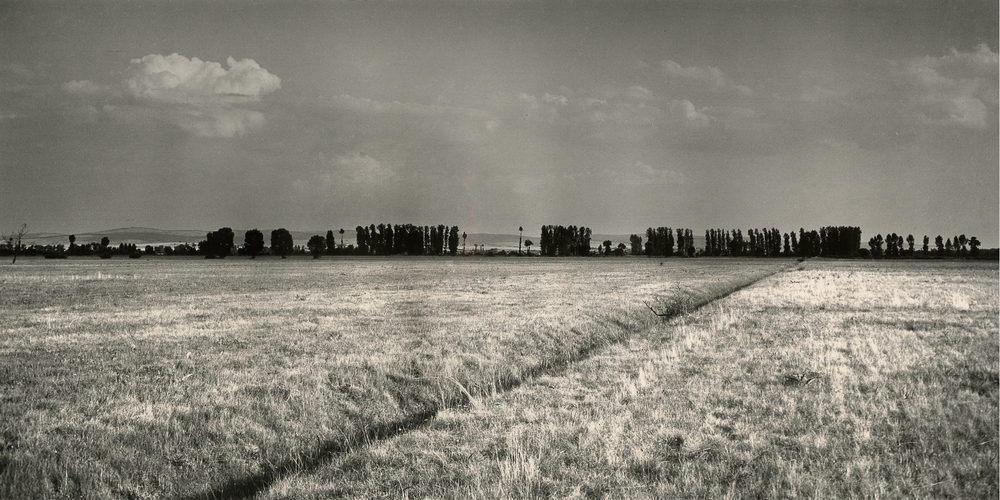 jihomoravska-sahara-vetrolamy-1954-copyright-vera-spurna.jpg