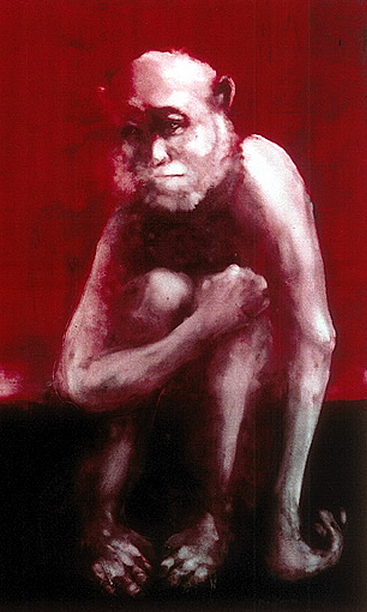 Capuchin (Red) Monkey