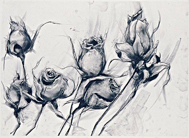 Black & White Roses #7