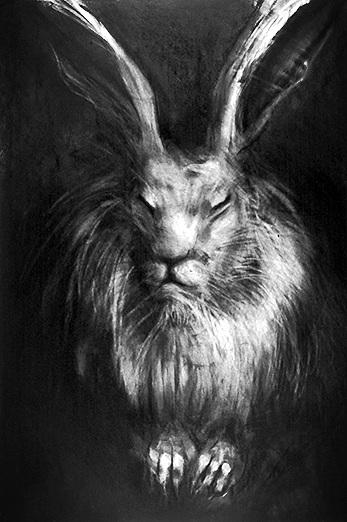 Rabbit # 13