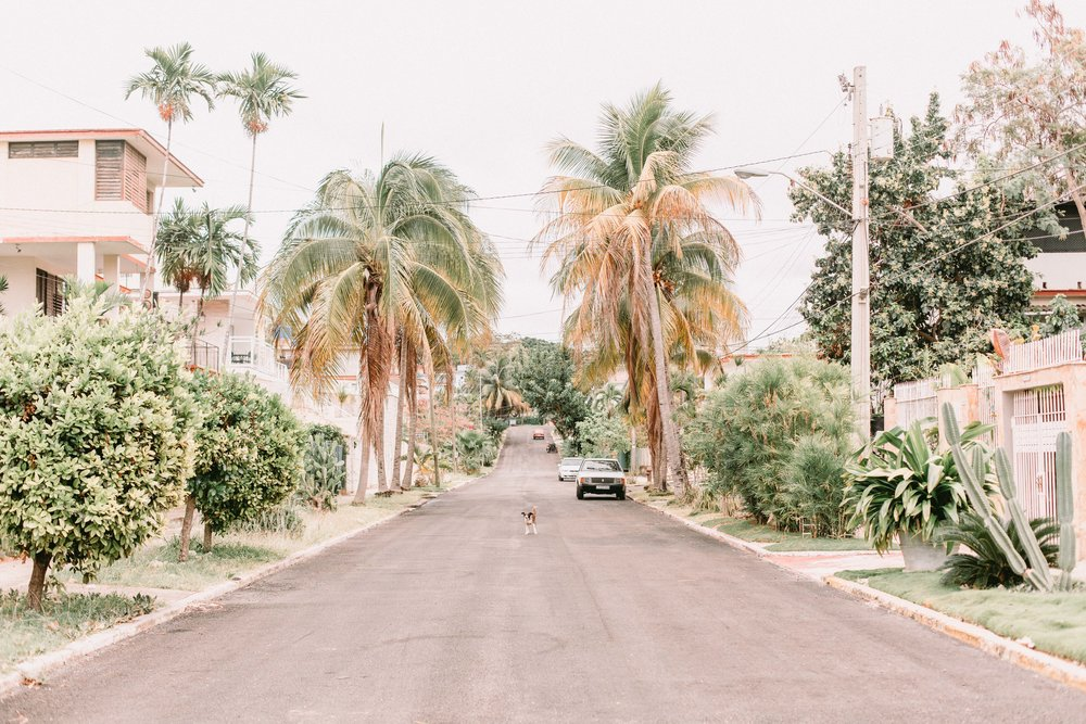 cuba_selects_all_lowres-7376.jpg