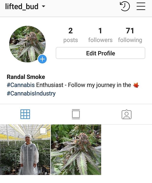Hey everyone! I've started my journey in the #cannabisindusrty and created a IG page following my adventures. If you're a #cannabis enthusiast or even a little curious about this amazing plant please follow my new page @lifted_bud. I will showcase what's happening in the industry and might dive into product reviews after legalization! #budinc #cannabisindustry #cannabiscommunity