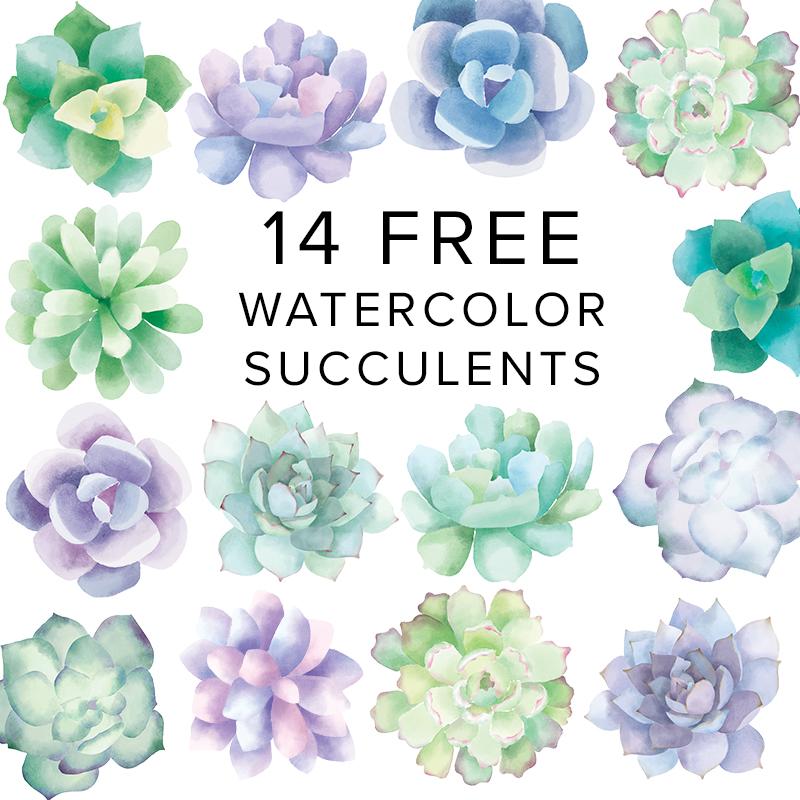 14 free watercolor succulent clip art pieces julie comstock