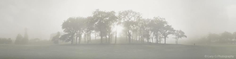'Domain Mist'