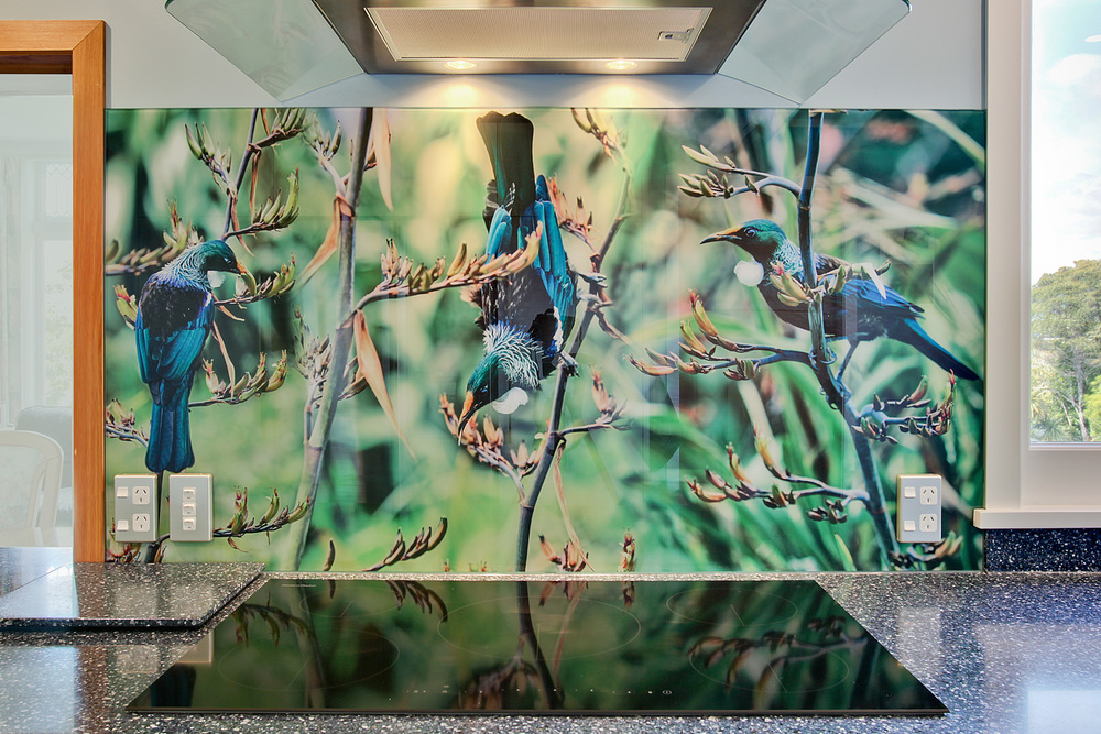 tui bird splashback photo 1 low res.jpg
