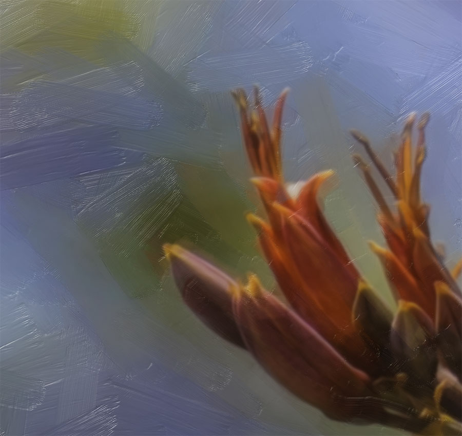 flax buds printed image splashback lucy g detail 4.jpg