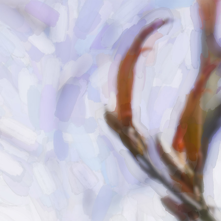 'FLAX FLOWER 1' (digital painting) printed image on glass splashback - detail