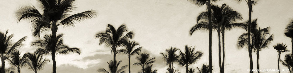 'PALM TREES' sepia (digital painting) printed image on glass splashback