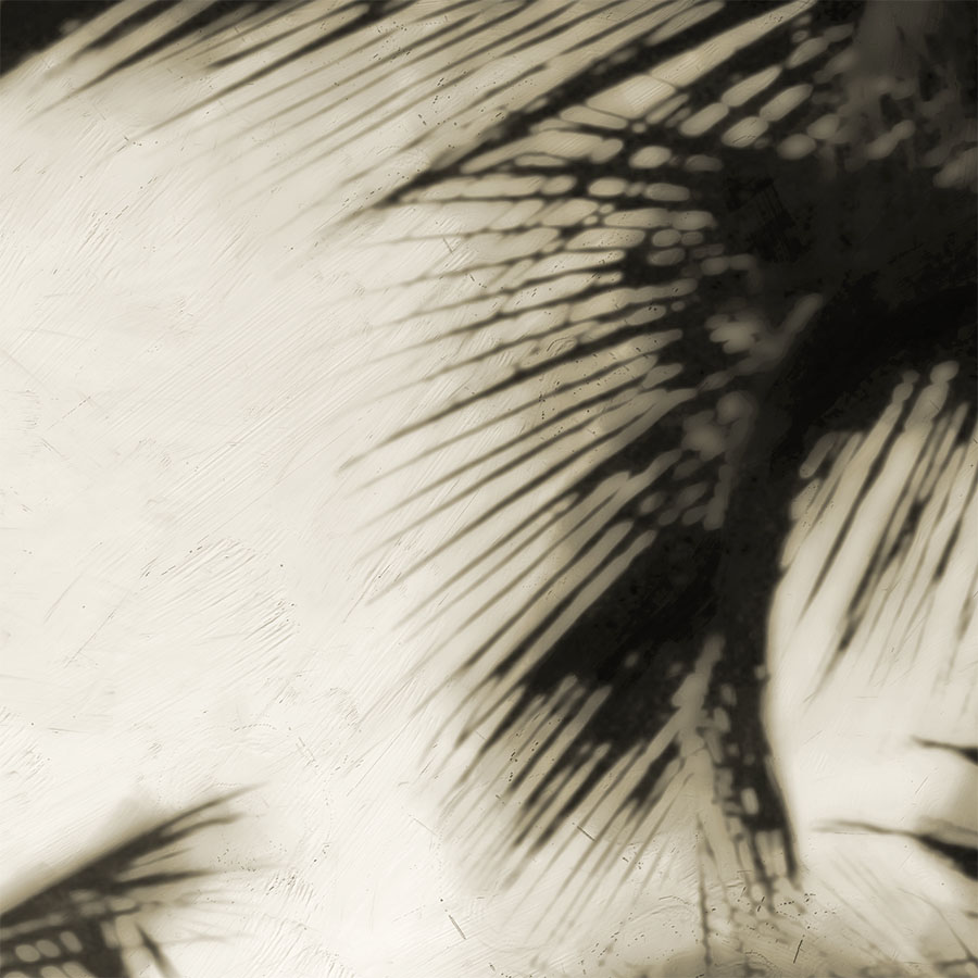 'PALM TREES' sepia (digital painting) printed image on glass splashback - detail