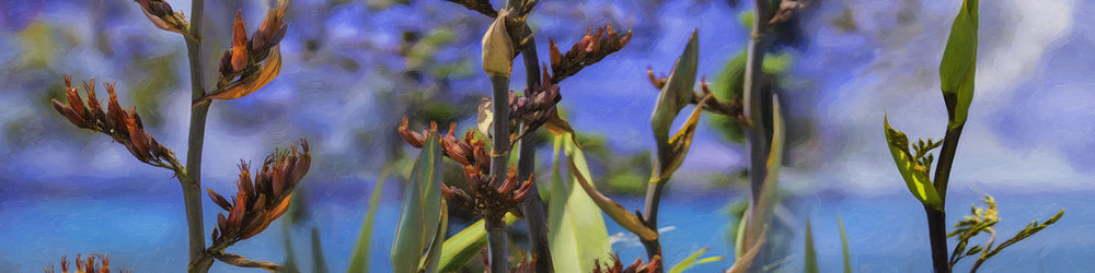 NAT 2016-10 Flax Buds (digital painting)