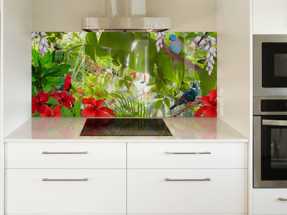 Printed image on glass kitchen splashback  - Queensland,  Australia - 'Birds of Paradise'