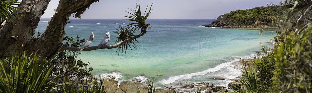 Australian Beach 10