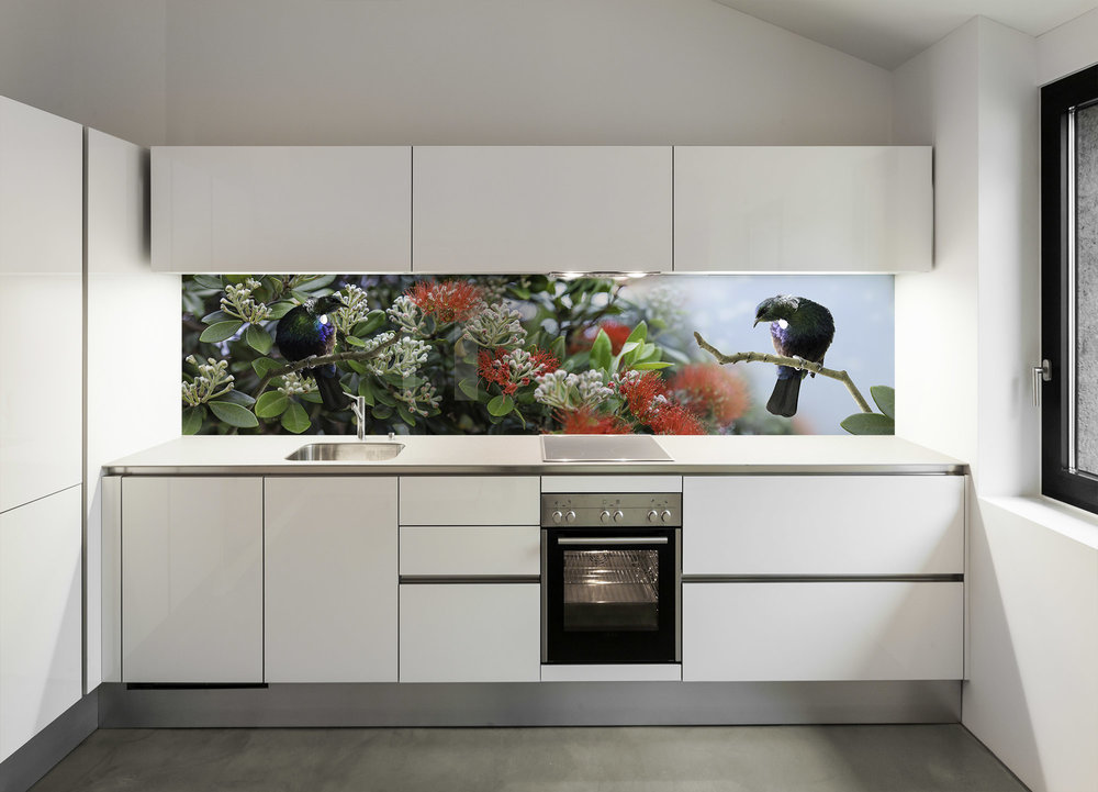Tui in Pohutukawa - kitchen splashback design