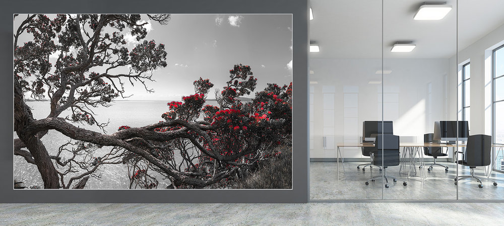 NZ LANDSCAPE- wallpaper mural - - A large format wallpaper mural print was installed on this office wall using the panorama ''Eternal Home''.