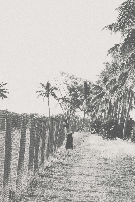 Fiji-52.jpg