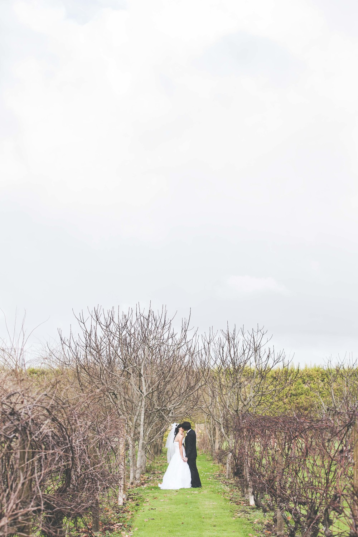 Andrew & Courtenay - #26.jpg