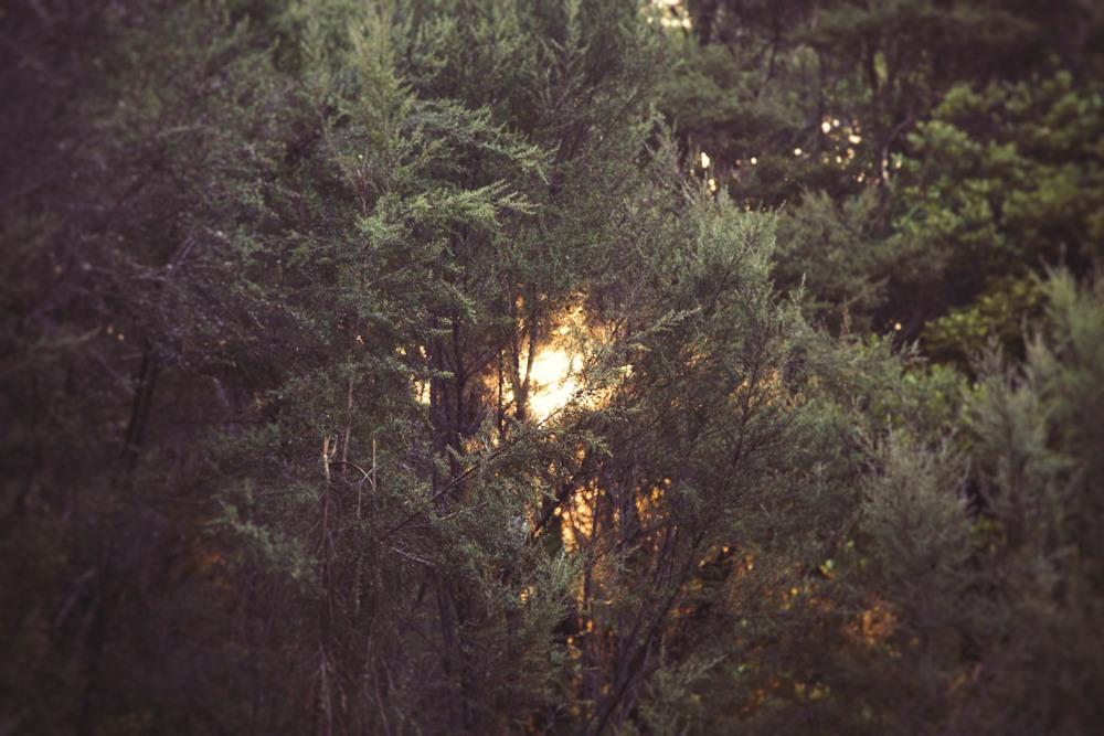 Hike-14.jpg