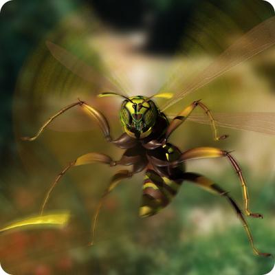 wasp-thumb.jpg