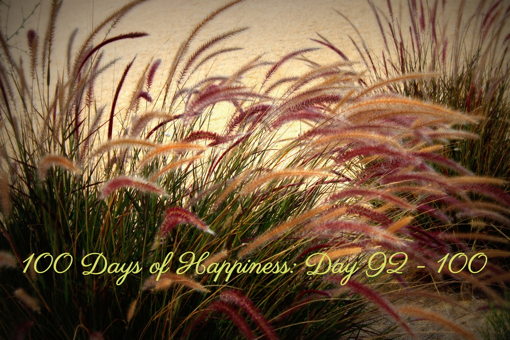 My Final Entry to the 100 Day's of Happiness Porject