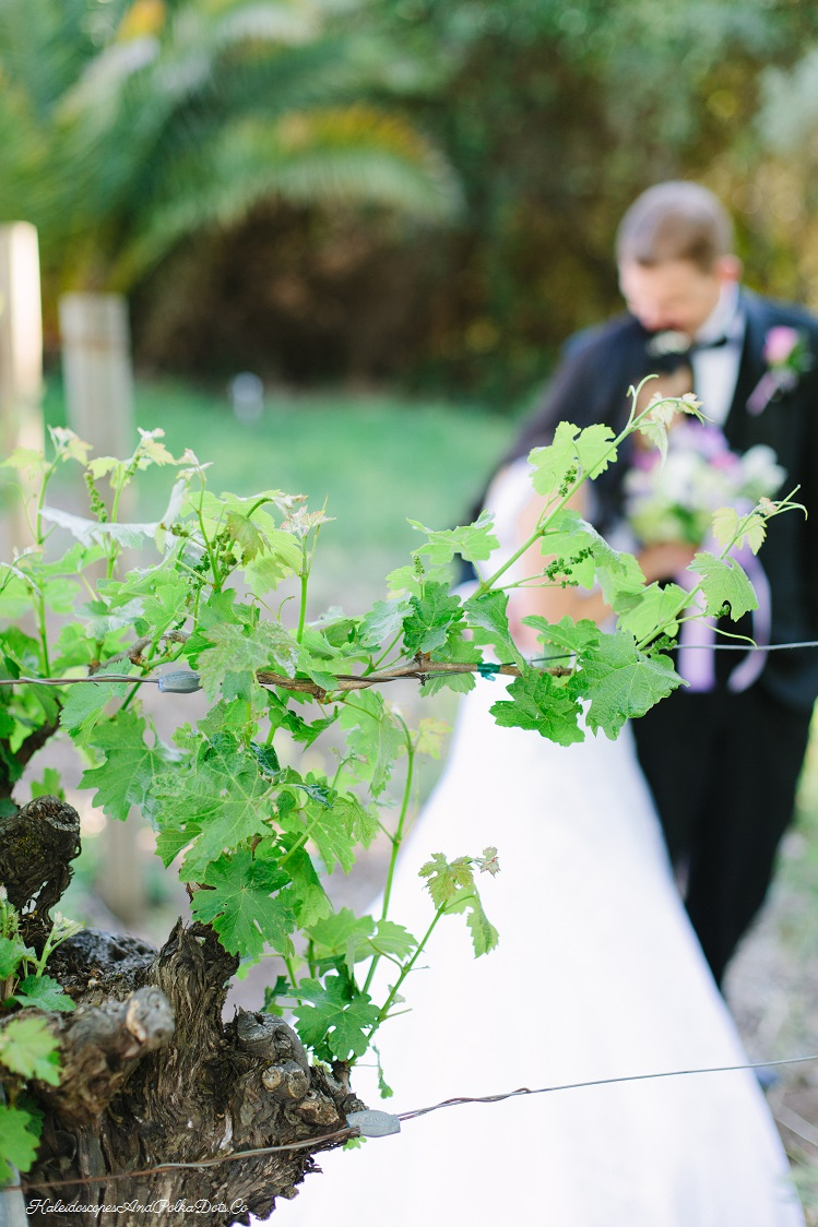 Nothing like a natural setting to create a bit of romance // Kaleidoscopes And Polka Dots