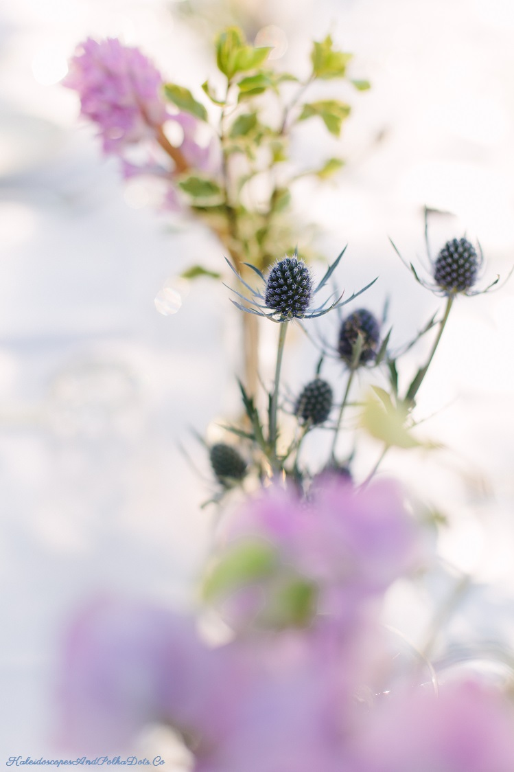 A lovely set of flowers from Erika Anderson //  Kaleidoscopes And Polka Dots