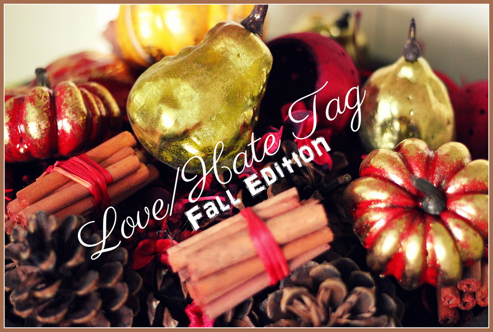 Love/Hate Tag - Fall Edition | Noting all the wonderful things I love about fall and a few things that I dislike rather than hate...i.e. how short it is.