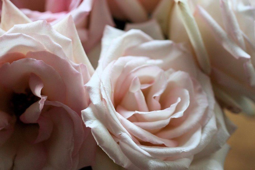 Three Nontraditional Valentine's Day Ideas #giftgiving #romanticatheart #diy #lbloggers #cbloggers #bookbloggers (5).JPG