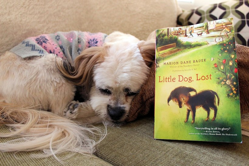 Two charming books for fellow dog lovers #furmom #puppylove #bookbloggers #booklovers #lbloggers
