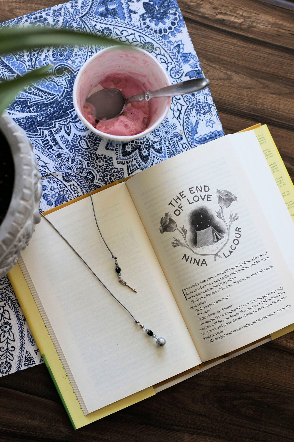 The End Of Love by Nina Lacour  - a video review  #bookbloggers #booklove #bookish #lbloggers