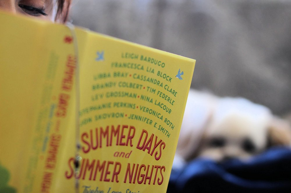Summer And Summer Nights Edited by Stephanie Perkins - a video review and blog post. #bookbloggers #booklove #bookish #lbloggers