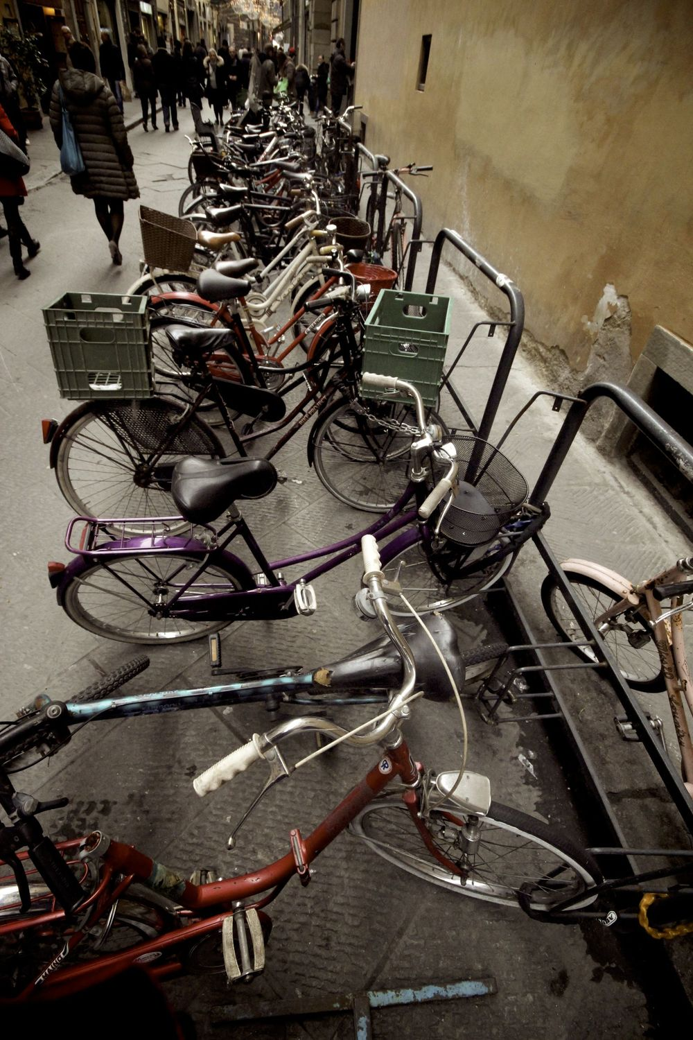 Bicycles in Firenze