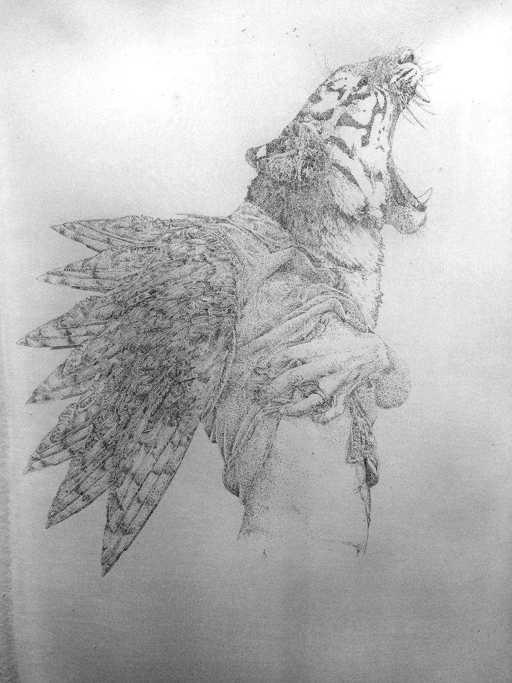 Animophelia. Hand drawn illustration on silk organza. 24 x 18''. Cei A Lambert 2014