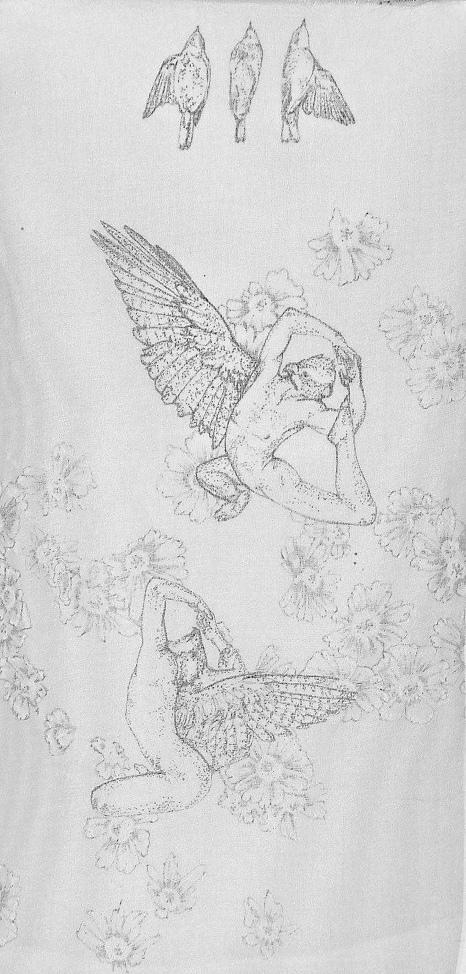 King Pigeon.jpg