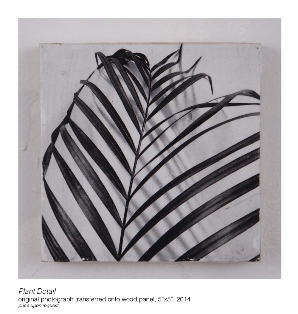 JessicaKrauseSmith_prints on wood1.jpg