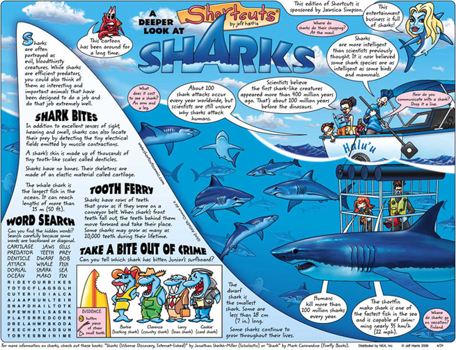 Shc_Lrg_Shark.jpg