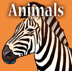 SC_Catgry_Animal.jpg