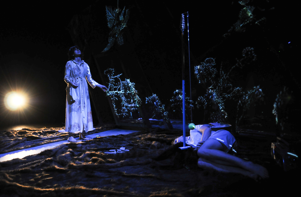 My Darling Patricia's  Night Garden , Performance Space 2009. Photo Heidrun Lohr