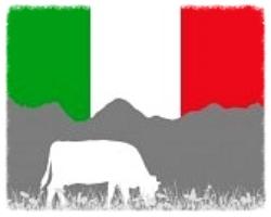 34149010-cow-alp-and-italian-flag.jpg