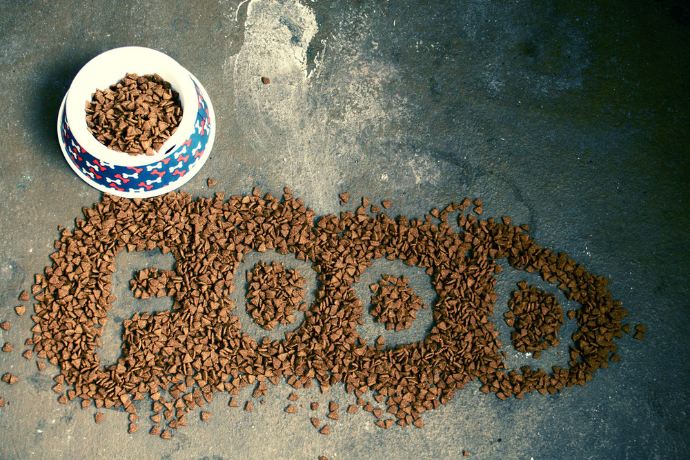 Finding-Lost-Dogs-Dog-Food.jpg