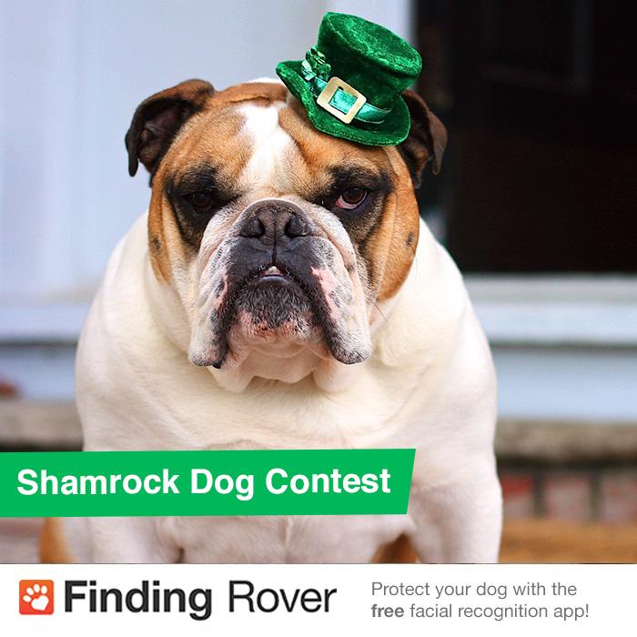 FDR-St-Patricks-Day-Contest.jpg