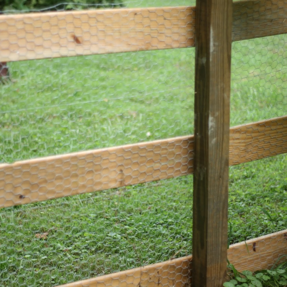 Chicken wire can be secured to a fence with a staple gun.