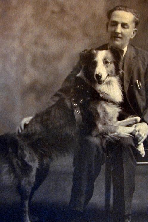 Bobby the Wonder Dog 1920s