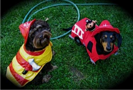 Lauren A's Firefighters