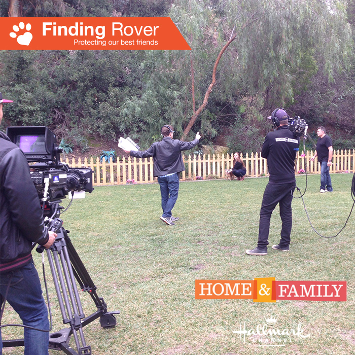 Home and Family Promo_3 29Jan15.jpg