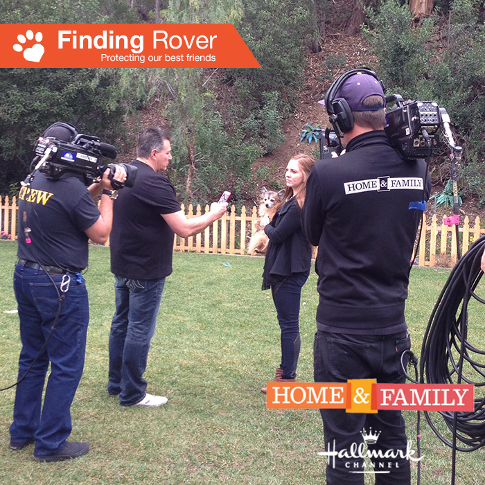 Home and Family Promo_1 29Jan15.jpg