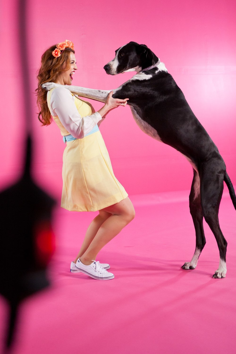 Great Dane Kiss_2 via Neil Lockhart.jpg