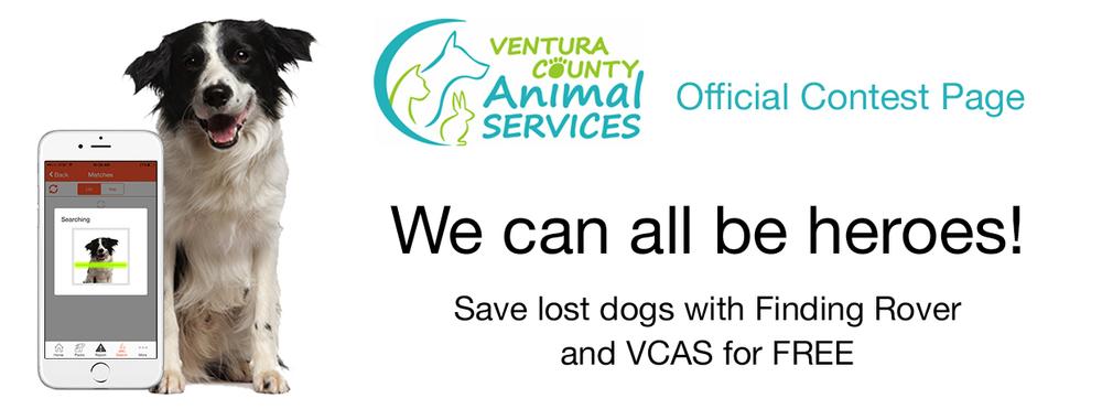 Ventura Contest Page Header.jpg