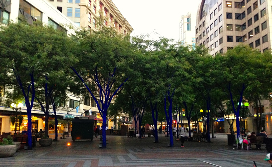 seattle-blue-trees-downtown-girl-loves-travel.jpeg