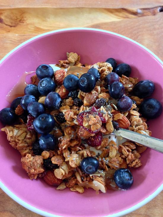 healthy blueberry granola recipe, chia seed greek yogurt recipe, la brea bakery granola, almond granola, cheap la brea bakery granola, raw honey and granola, best healthy granola recipe, blueberries for breakfast
